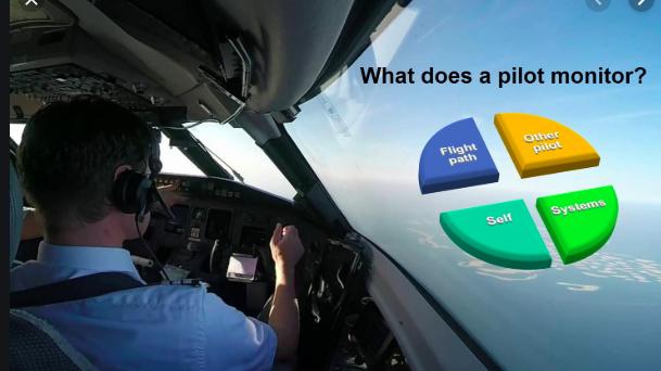 Pilot monitoring